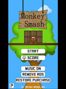 Monkey-Smash 5