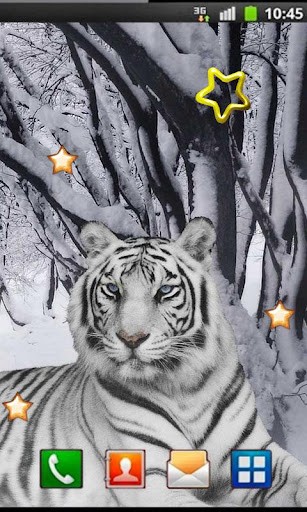 Snow Leopard Best HD LWP