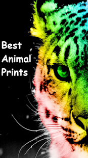 Best Animal Print Wallpapers