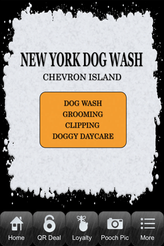 New York Dog Wash