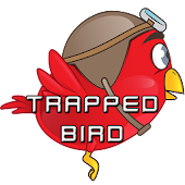 Trapped Bird