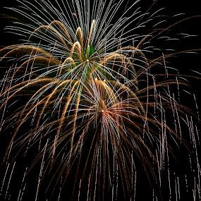 Raining Color by Kimberly Davidson - Public Holidays July 4th ( colorful sky, mi., st clare mi. landscape, fireworks, 4th of july,  )