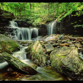 R.B. Ricketts Falls May 2014 by Aaron Campbell - Instagram & Mobile iPhone ( iphone 5s, falls trail, rb ricketts falls, green, lush, waterfall, glen leigh, pennsylvania, ricketts glen, iphoneography, apple iphone, foliage, state park, slow shutter,  )