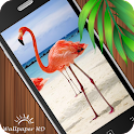 Animal Wallpaper HD icon