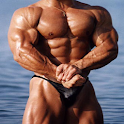 Body Building Workout Program logo