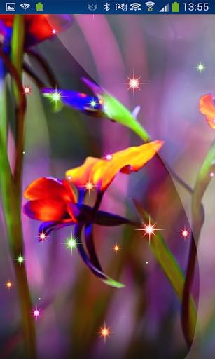 Little Summer Flowers HD LWP