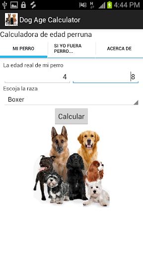 Dog Age Calculator