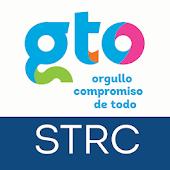 GTO Abierto