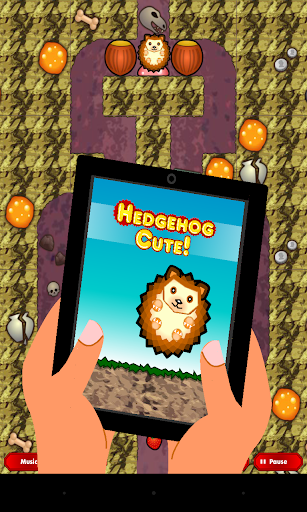 Hedgehog Cute free with ads