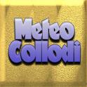 Meteocollodi icon