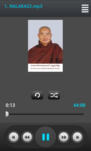 Venerable Pa Auk SayaDaw Vol 2