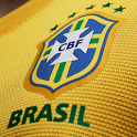Brazil Team 2014 Wallpaper icon