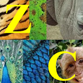 ZooConnector