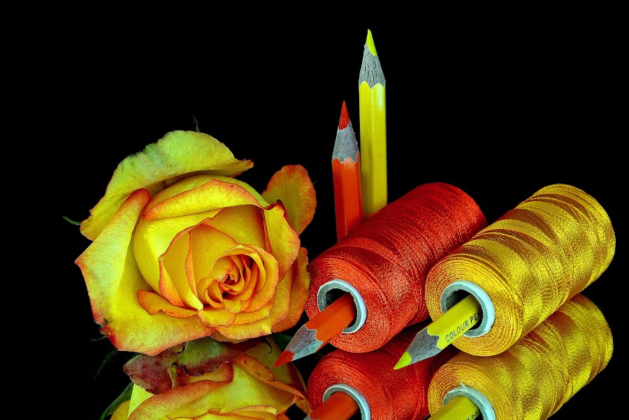 Pencil-thread combo2015-6 by Asif Bora - Artistic Objects Other Objects (  )