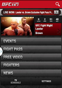 UFC Screenshot 14