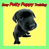 Easy Potty Puppy Training