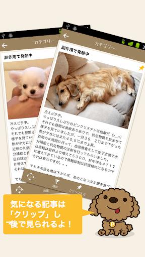 玩新聞App|犬の写真ブログ動画を快適に読むPOCHIPOST ポチポスト免費|APP試玩
