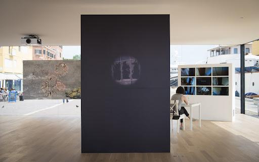 Mykola Ridnyi & Serhiy Zhadan: Blind Spot, 2014. in Hope!, Pavilion of Ukraine, 56th International Art Exhibition, Venice Biennale 2015