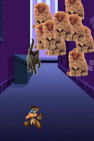 Kittens Attack