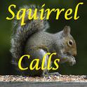 Squirrel Calls icon