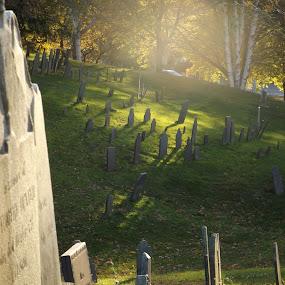 by Phil Ballachino - City,  Street & Park  Cemeteries