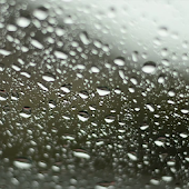Rainy Day HD. Video Wallpaper.