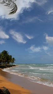 Beach and sea. screenshot 14