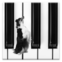 Dog Piano logo