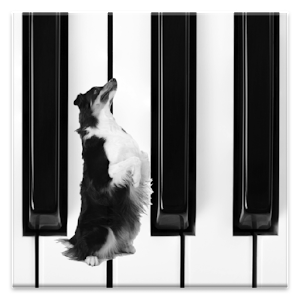 Dog Piano Icon