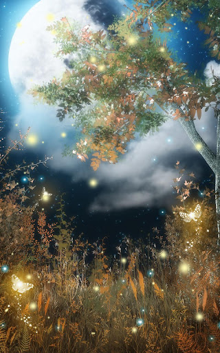 玩免費個人化APP|下載Fireflies Live Wallpaper app不用錢|硬是要APP