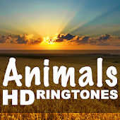 Animal Sounds Animal RingTones