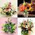 1000 flower arrangements file APK for Gaming PC/PS3/PS4 Smart TV