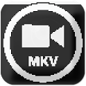 FLV/F4V(Flash Video) Player icon