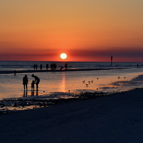 Honeymoon Island by MaryBeth Schepper - Landscapes Sunsets & Sunrises ( sunset, beach, people,  )