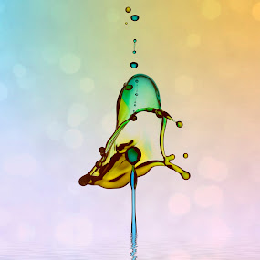Waterdrops by Kurit Afsheen - Abstract Water Drops & Splashes ( abstract, splash, waterdrops,  )
