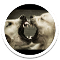 Mad Dogs Live Wallpaper icon