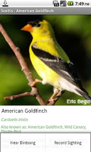 Scotts Bird ID - screenshot thumbnail
