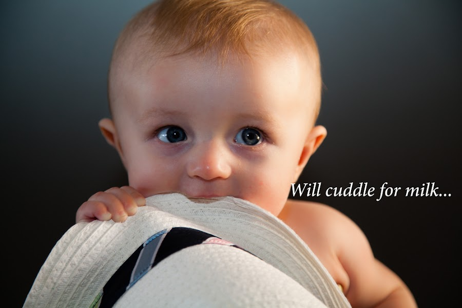Will cuddle for milk. by Olga  Straatsma - Typography Captioned Photos ( child, babies, black and white, close up, baby boy, portrait, kid )