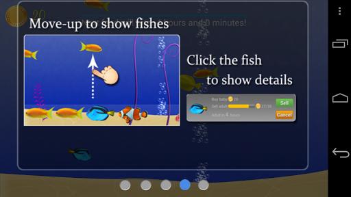 Feed Fish