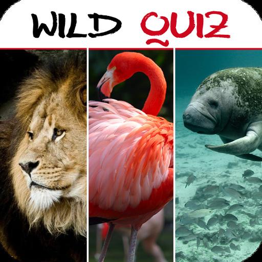 Wild Quiz LOGO-APP點子