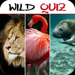 Wild Quiz APK