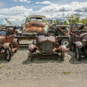 Motor Garden by Tammy Drombolis - Transportation Automobiles (  )