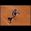 Tennis illustrated icon
