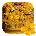 Beautiful Autumn Free icon