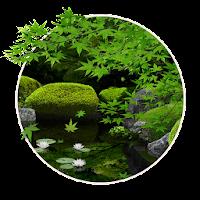 Zen Garden -Summer- LW 1.3