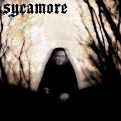 Sycamore 3