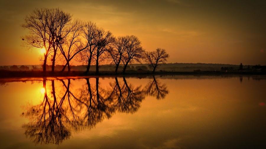 by Nenad Milic - Landscapes Sunsets & Sunrises ( , golden hour, sunset, sunrise )