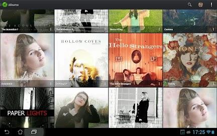 PlayerPro Music Player Screenshot 9