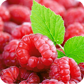 Raspberries Live Wallpaper