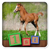 1st Games Kids Pony Puzzles